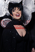 Liza Minnelli (2) Lookalike and Impersonator